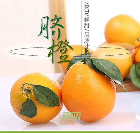 广西脐橙10斤包邮农家现摘新鲜纯天然超甜水果非秭归赣南脐橙子